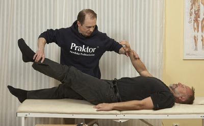 Mac Pompeius Wolontis founded the Swedish School of Kinesiology in 1987